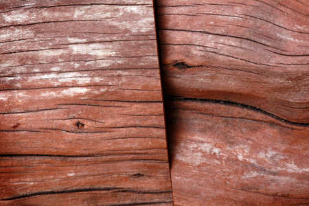 wood cut: Cut Cedar wood logs Stock Photo