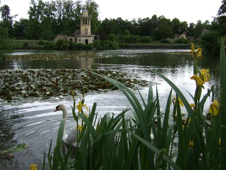 The Queen's Hamlet: Swan in pond; Marlborough Tower in the background