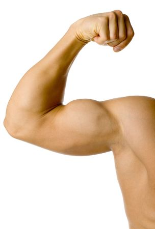 Closeup of male flexed arm. Isolated on white in studio.