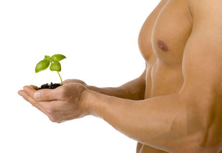 testosterone: Muscular man holding small plant and soil in his hands. Isolated on white in studio.