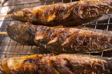 protien: Grilled catfishes