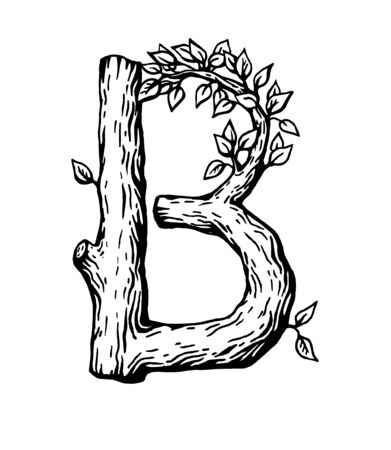 Black engraving Letter B made of wood with leaves on the white background