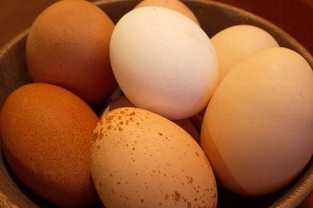 estereotipo: la agricultura, el desayuno, pollo, la diversidad, el huevo, los huevos, la igualdad, granja, agricultura, alimentaci�n, gratis, gallina, ingrediente, ingredientes, men�s, tortilla, org�nicos, los prejuicios, producci�n, calidad, variedad, receta, recetas, estereotipo, la variedad