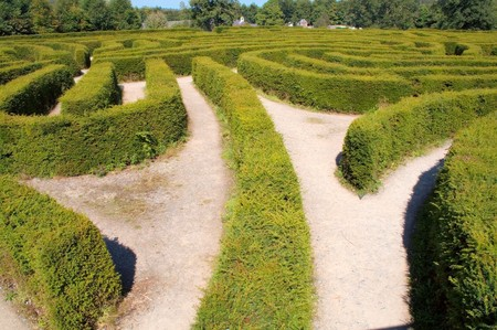 Europes largest maze at Castlewellan Ireland photo