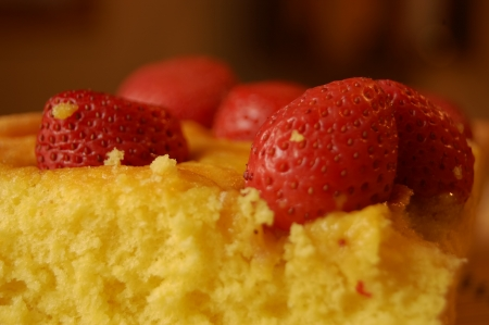 Homemade cake with fresh stawberry
