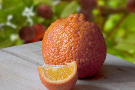 juicy sliced orange with beautiful texture