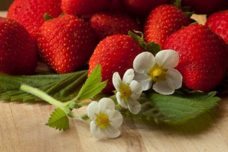frische rote Erdbeeren mit Bl�ttern und Bl�ten