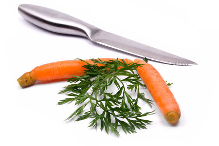 generic healthy food reflected in various fresh vegetables photo