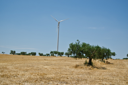 Italian landscape in the midday with wind turbine
