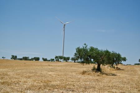 Italienische Landschaft in der Mittags mit Windturbine