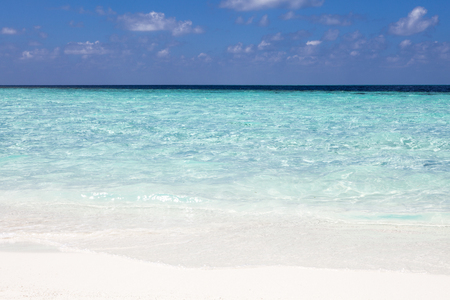 maldives island: tropical beach on Maldives island with white sand