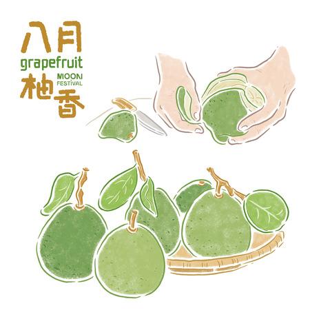 """Festival del Medio Otoño, chino """"El olor a fruta-pomelo en agosto"""", pomelo Foto de archivo - 80525123"""