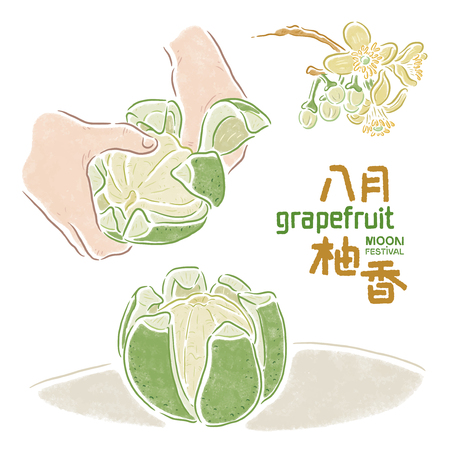 "Mid-Autumn Festival, Chinees ""De geur van fruit-pomelo in augustus"", grapefruit"