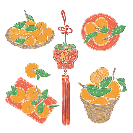 Asian new year, traditional food, oranges, vector illustration