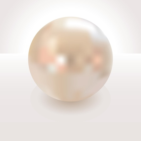 pearl background: illustration of a realistic pink pearl on gray background