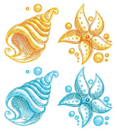 sea shells on beach: hand drawn illustration of shell and starfish Illustration