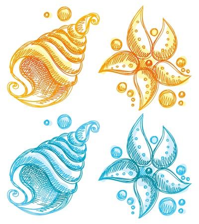 etoile de mer: illustration tir�e par la main de la coquille et �toiles de mer