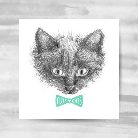 pencil and paper: cat face sketch, vector hand drawn illustration Illustration