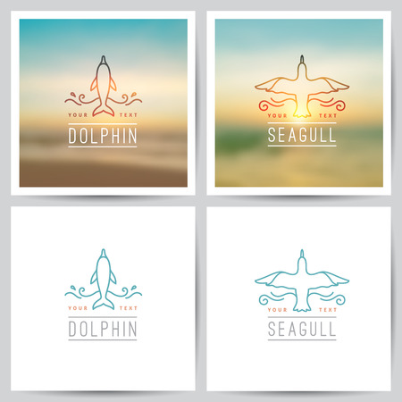 vector of dolphin and seagull on white background and on blurred seascape
