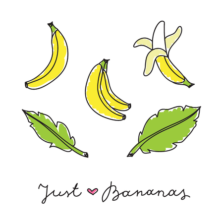 fruit and veg: vector set of hand drawn bananas and leaves on white Illustration
