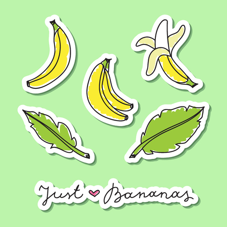 fruit and veg: vector set of hand drawn bananas and leaves, paper stickers on green