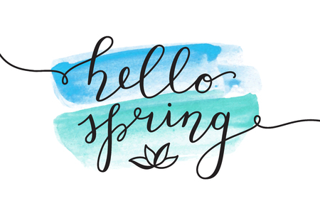 Hello spring, vector lettering and flower, spring card with handwritten text