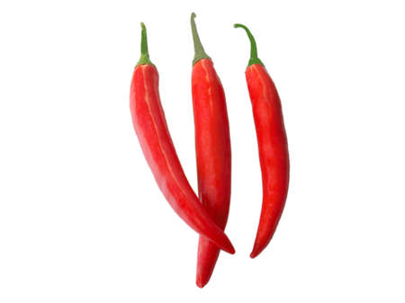 Three Red chili peppers on white background Stock Photo - 2355385