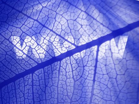 www-against blue dradient and leafy background Stock Photo - 3576697