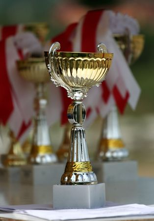 victorious: Golden and silver winner cup