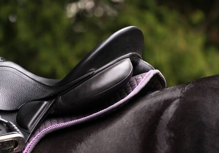 Saddle on a black horse photo