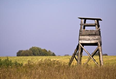 Hunting ambush standing on the field Stock Photo