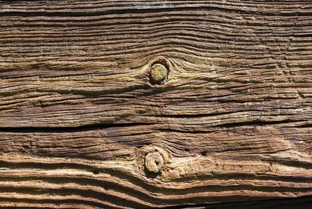 Abstract textured wood background  photo