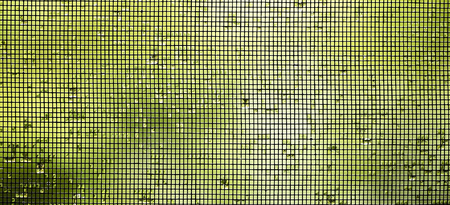 website window: Website banner of a mosquito wire screen on the window with water drops Stock Photo