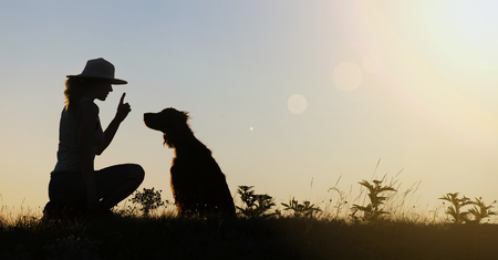 Silhouette of a female's training her dog - website banner