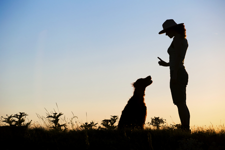 Website banner silhouette of a female as training her dog