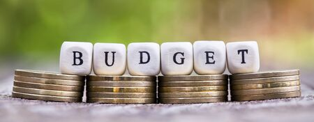 Budget, financial planning, savings concept, web banner of money coins Stok Fotoğraf