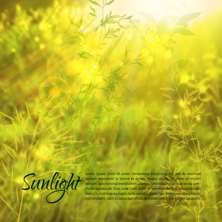 Vector illustration. Blurred photo background with sunlight and grass silhouettes in the foreground.