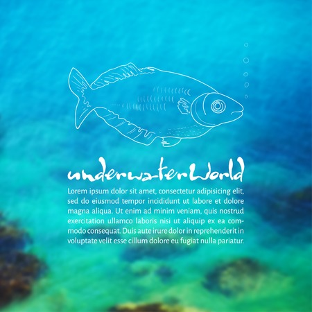 Vector illustration. Blurred background photo. Seabed with sketch - fish and place for text