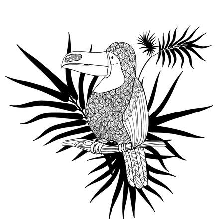 Ilustración vectorial Artes graficas. Tucán. Pájaro tropical del tucán en un fondo de hojas tropicales. En blanco y negro. Foto de archivo - 77395510