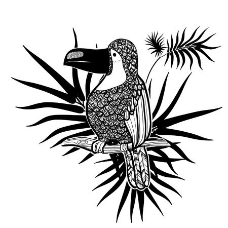 Ilustración vectorial Artes graficas. Tucán. Pájaro tropical del tucán en un fondo de hojas tropicales. En blanco y negro. Foto de archivo - 77395636