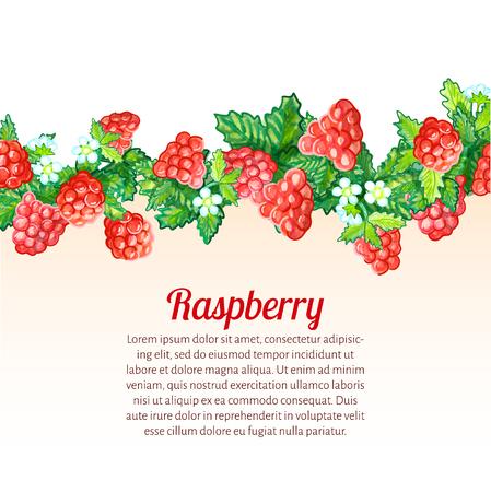 Ilustración del vector. Textura acuarela de fondo con acuarela frambuesa y hojas. Alimentos orgánicos. Foto de archivo - 83075553