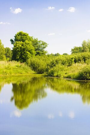 Summer scenery. Trees, Water, blue Sky photo