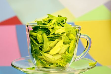 Cup full of leaves on color background photo