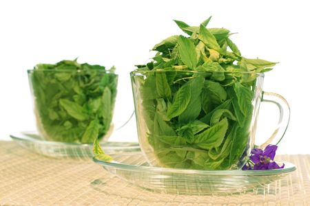 Green tea freshness photo