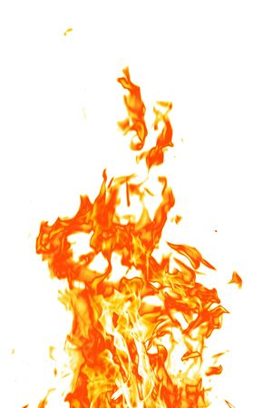 Fire isolated on a white background. Stock Photo