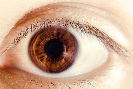 Eye Stock Photo - 5484815