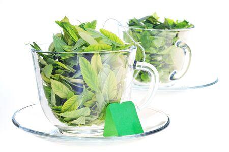 Freshness of green leaves, on white Stock Photo - 5530257