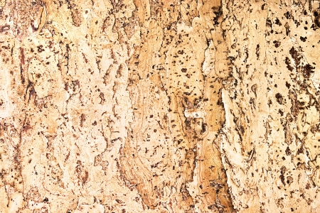 brown cork: texture of the cork material
