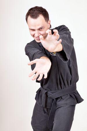 sportsman, martial arts series photo