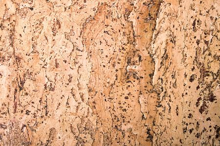 cork: textura del material de corcho  Foto de archivo